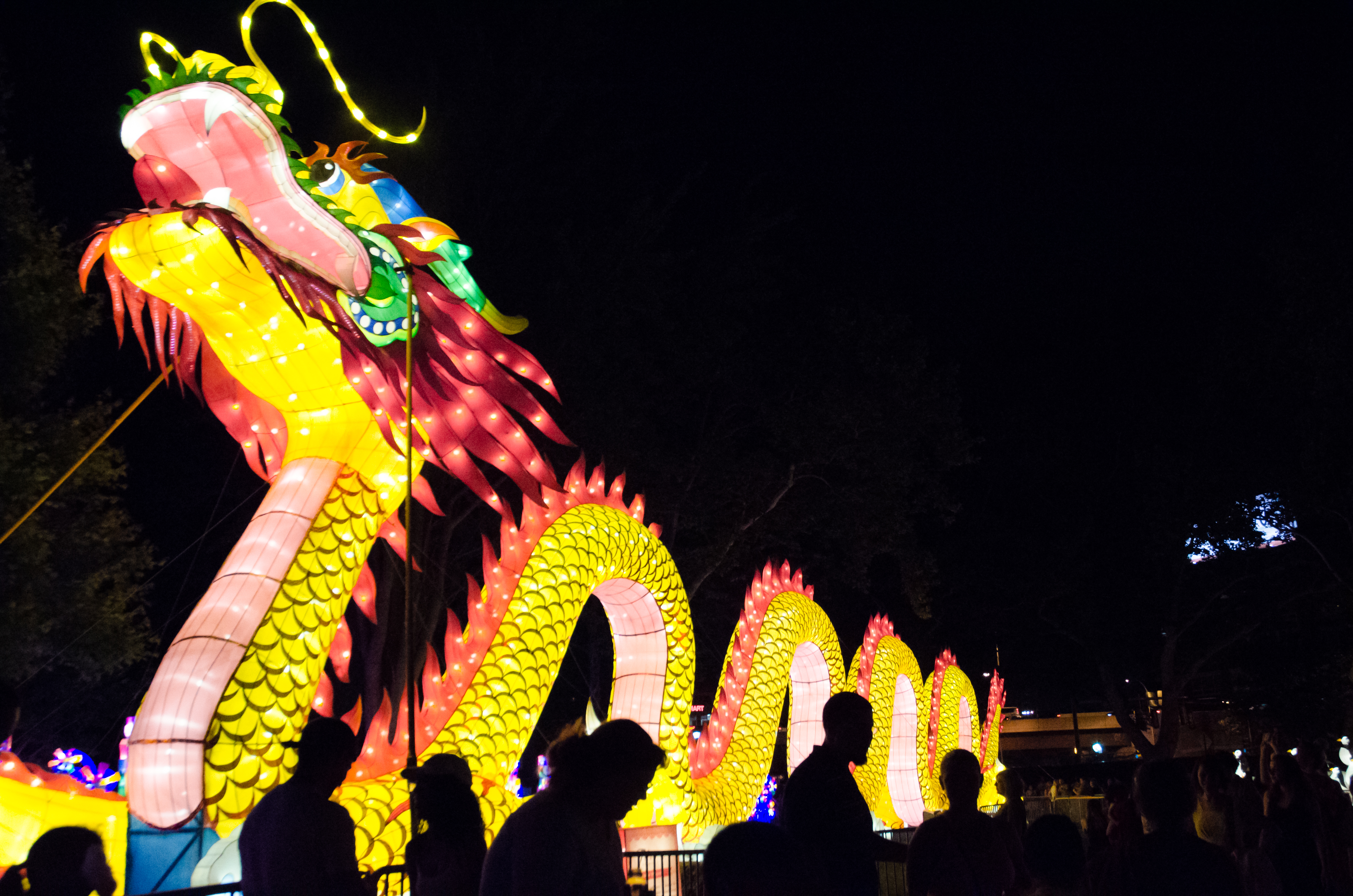 Photos Chinese Lantern Festival Lights Up Philly