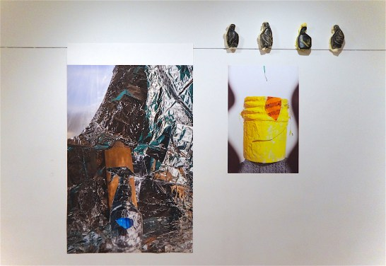 Silhouette (Weissberger), digital photograph/archival pigment print, 2016, and Bird Bottles (Aldrich), enamel on sprayfoam, 2017, and Yellow Bucket, Purple Wave (Weissberger), digital photograph/Photo Tex adhesive backed print, 2016.