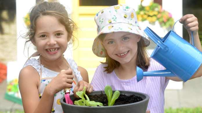 Discovery Garden seed kits are back