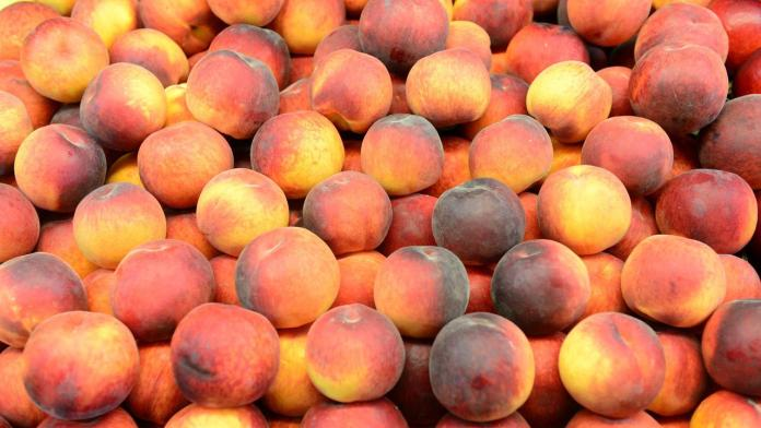 Stone fruits pulled from South Australian supermarket shelves