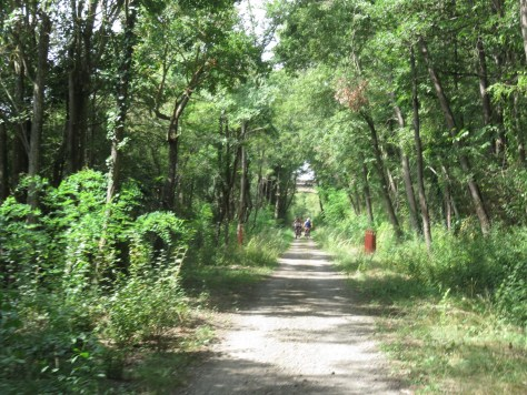A narrow shady path with a small group of cyclists in the distance