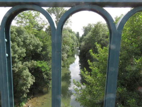 Looking through blue metal railings down to the a wide and tree-lined river