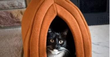Alea's Deals 52% Off PETMAKER Cat Pet Bed! Was $24.99!