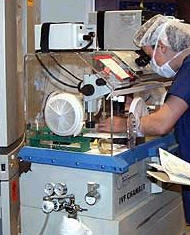 лаборатория эмбрионы