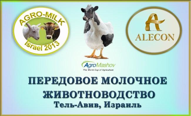 Agro-Milk 2013 практическая конференция животноводство