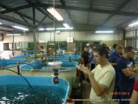 рыбная конференция Aqua-Fish-2013