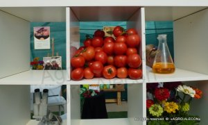Выставка Арава - помидоры, Кабачки, Баклажаны, Перец, наука