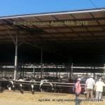 "Конференция ""Agro-Milk 2015"""