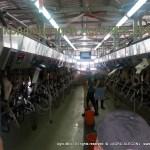 "Конференция ""Agro-Milk 2014"""