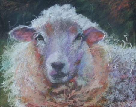 """Pink Ears by Aleda O'Connor 11"""" x 14"""" SOLD"""