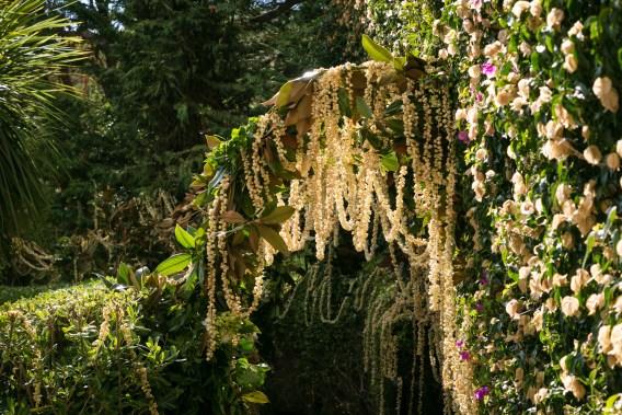 garden-wedding-flowers