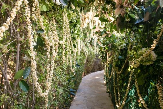 garden-wedding-walkway
