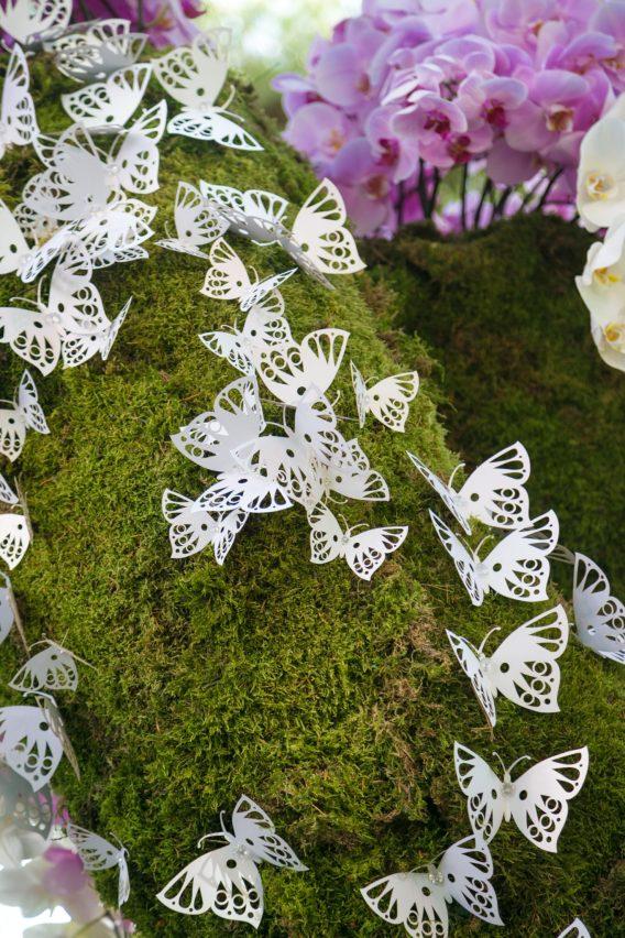lasercut-butterfly-detail