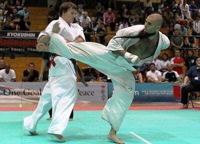 Resultado de imagen de kyokushin alejandro navarro