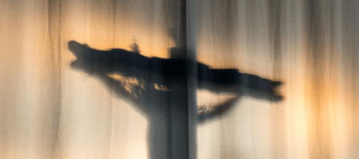 doctrina sustitución