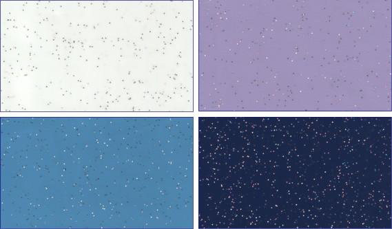 galactika Фактурные потолки
