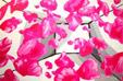 Rose-Petals- by Aleksandra Smiljkovic Vasovic aleksandraartworkcom