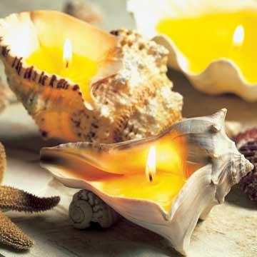 seashell-candle-holder