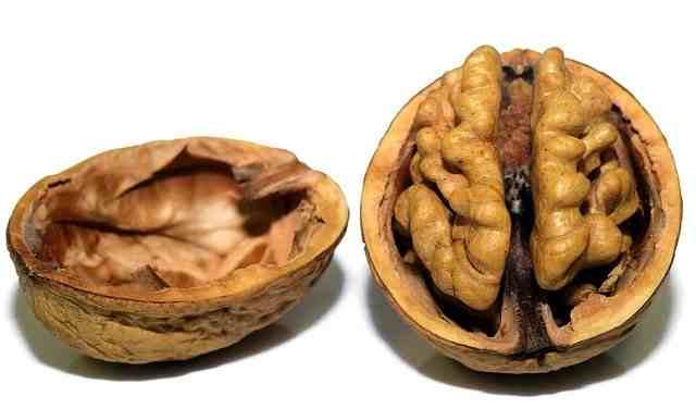 Орехи и белок помогают выглядеть моложе