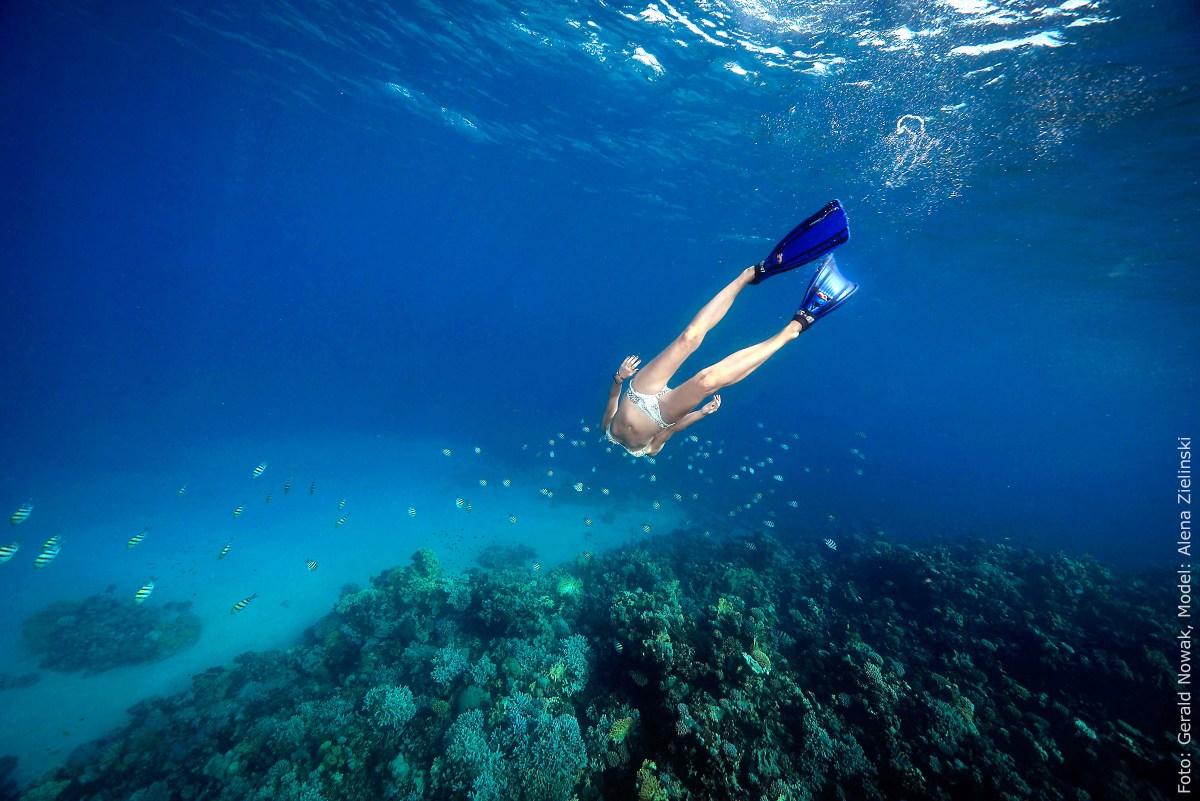 Liebeserklärung an das Meer