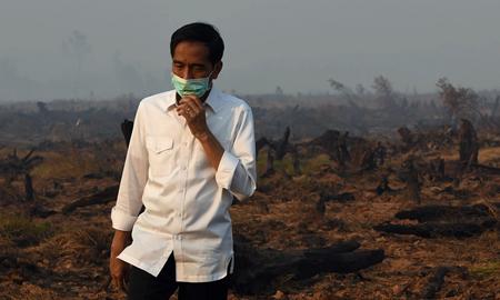 Joko Widodo dans la province du Kalimantan du sud en septembre