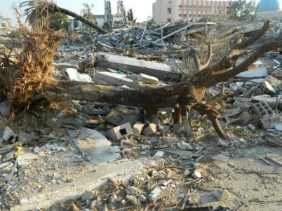 Israël s'attaque à tout à Gaza - Décembre 2012