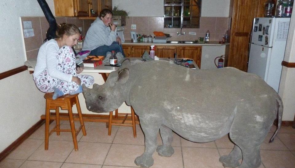 My house smells like rhino