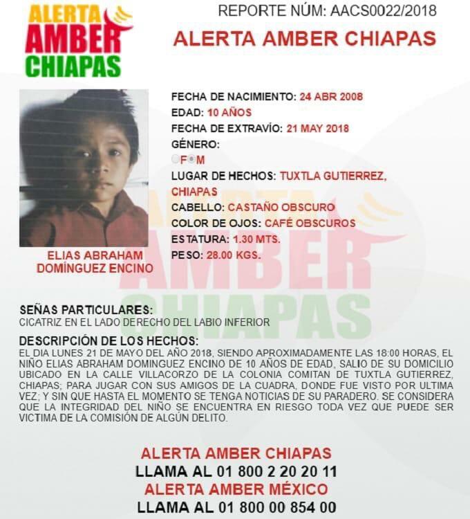 Apoyo para localizar a Elías Abraham Domínguez Encino de 10 años img 3265 1