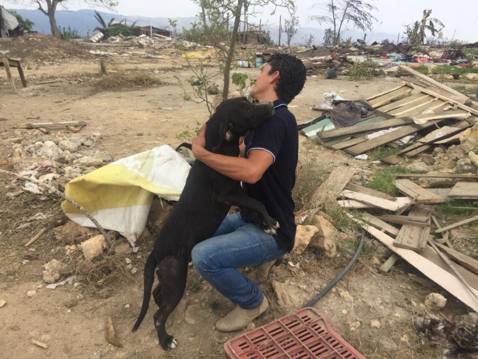 Mascotas, los más vulnerados en los desalojos del Mocri; activistas les buscan hogar 25623e96 d84d 4af3 b7c8 71b664025c4f