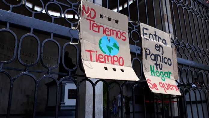 Autoridades incongruentes: legislan ecocidio pero quieren tren en la selva 13fba997 4317 444a 95dd 8f6d8caf1873