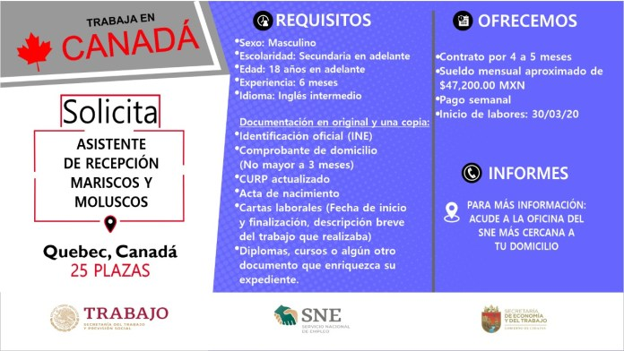 Ofertará Secretaría de Economía y del Trabajo más de mil vacantes WhatsApp Image 2019 10 13 at 2.16.17 PM 1