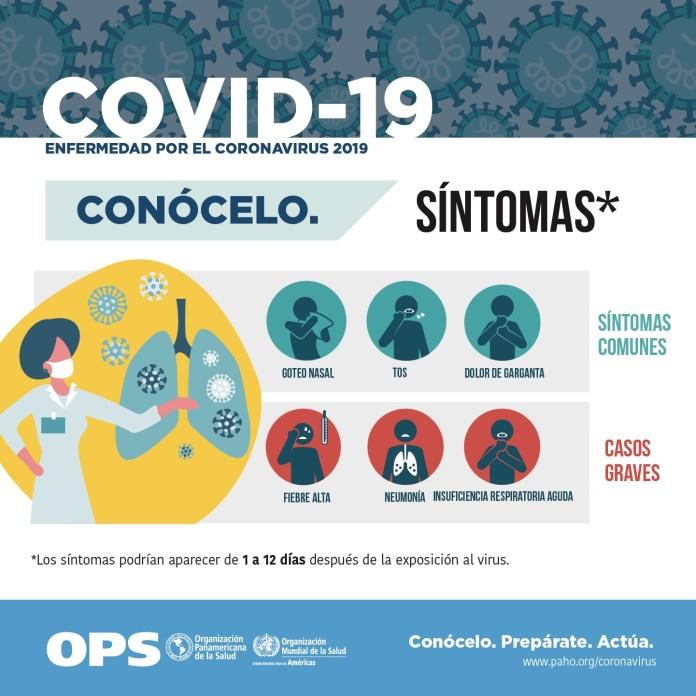 ¿Pueden los desinfectantes Lysol o Clorox matar el nuevo coronavirus? img 0319