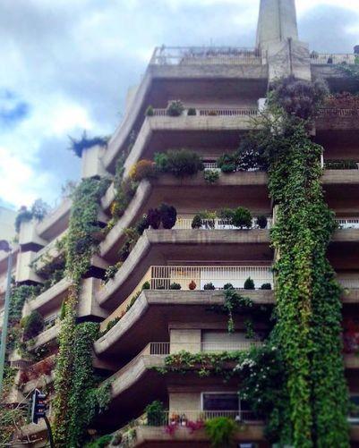 mas-verde-en-la-ciudad-slow-life