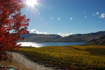 Lake Chelan and Vineyards