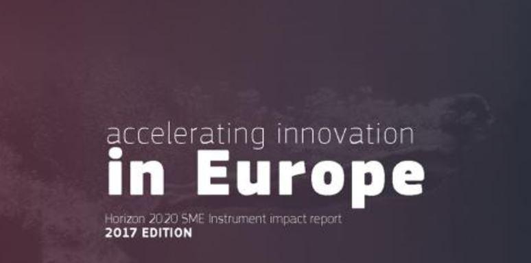 Horizon 2020 report 2017