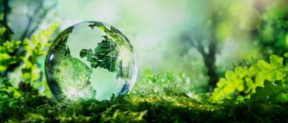 top-banner-global-environmental-footprint