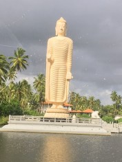 Il Buddha Bianco - Sri Lanka