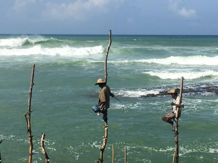 Pescatori tradizionali - Weligama, Sri Lanka