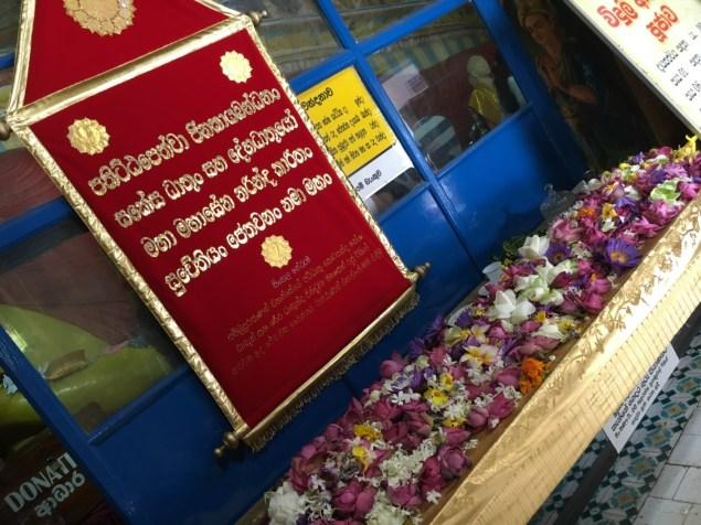 Offerte floreali - Sri Lanka