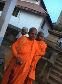 Monache - Sri Lanka