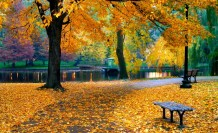 boston_autunno_019
