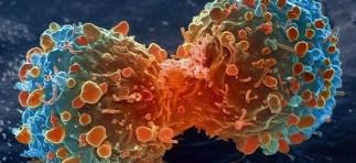 cancro1