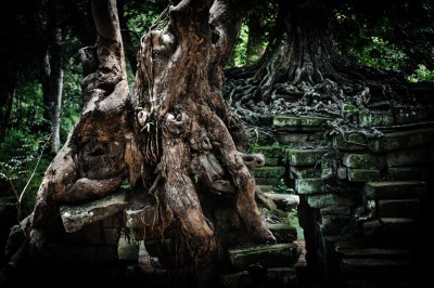 -ANGKOR part 1 ROOTS-05
