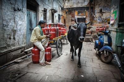 -India, Motherland 18