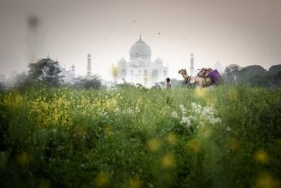 -India, Motherland 19