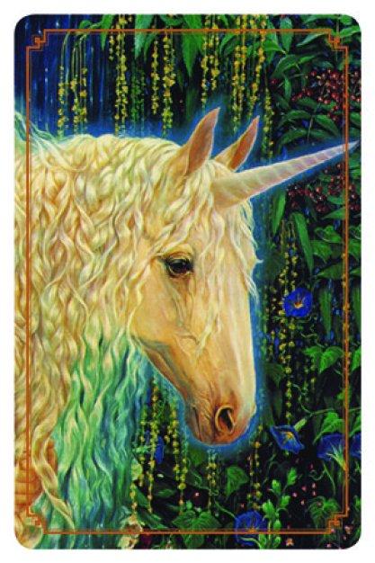 i messaggi degli unicorni