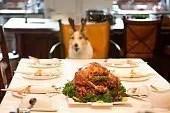 Foto casalinga di cane che indossa corna da renna finte seduto a tavola davanti ad un tacchino