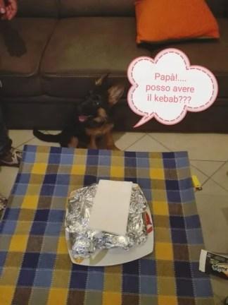 Cesar Millan spesso enfatizza l'importanza dell'educazione del cucciolo, nel rispetto delle regole di casa e del cibo.