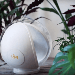 Alessio Paoletti co-founded togheter with Diva Tommei and Mattia Di Stasi Solenica Inc. Paoletti is the designer behind Lucy, the classy heliostat turned into a natural lighting robot.