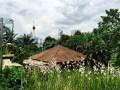 Orchid Park Kuala Lumpur KL Tower